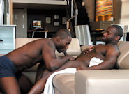 Morning Groove