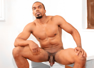 Gay Ebony Studs : Boxer - Boxer!
