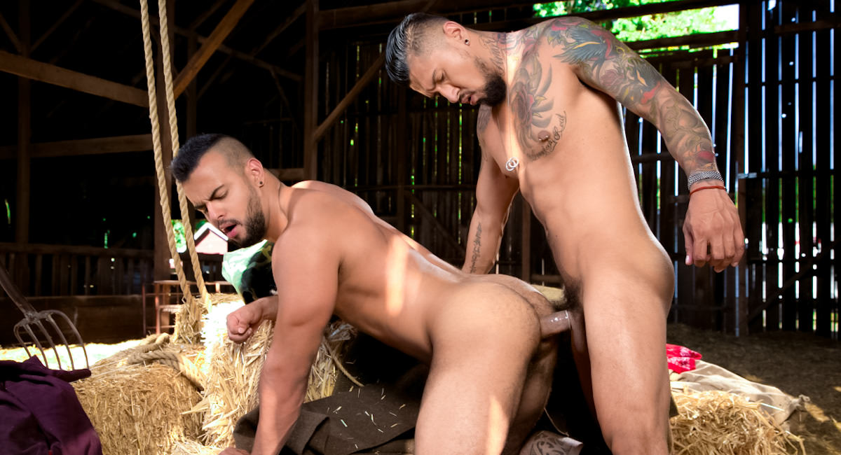 Gay Videos XXX : Open Road - chapter 1 - Boomer Banks -amp; Tony Orion!
