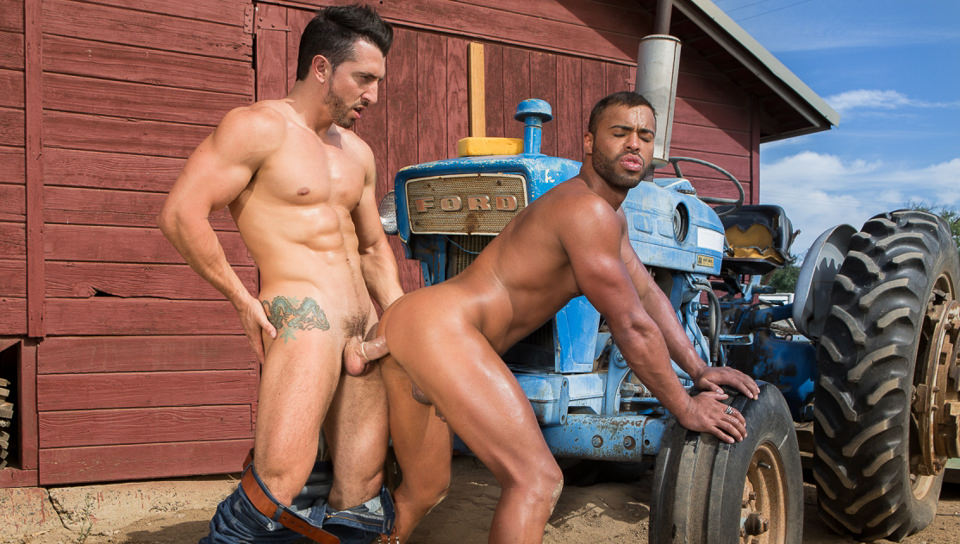 Saddle Up, Scene #05
