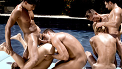 Heatwave : Bryan Williams, Brad Michaels, Aaron Brandt, Hawk McAllister, James West, Adam Wilde, Jeff Palmer, Buck Philips, Dan Brewer