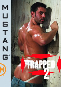 Trapped, Part 2 DVD Cover