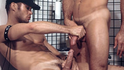 Shoot : Cougar Cash, Cliff Parker