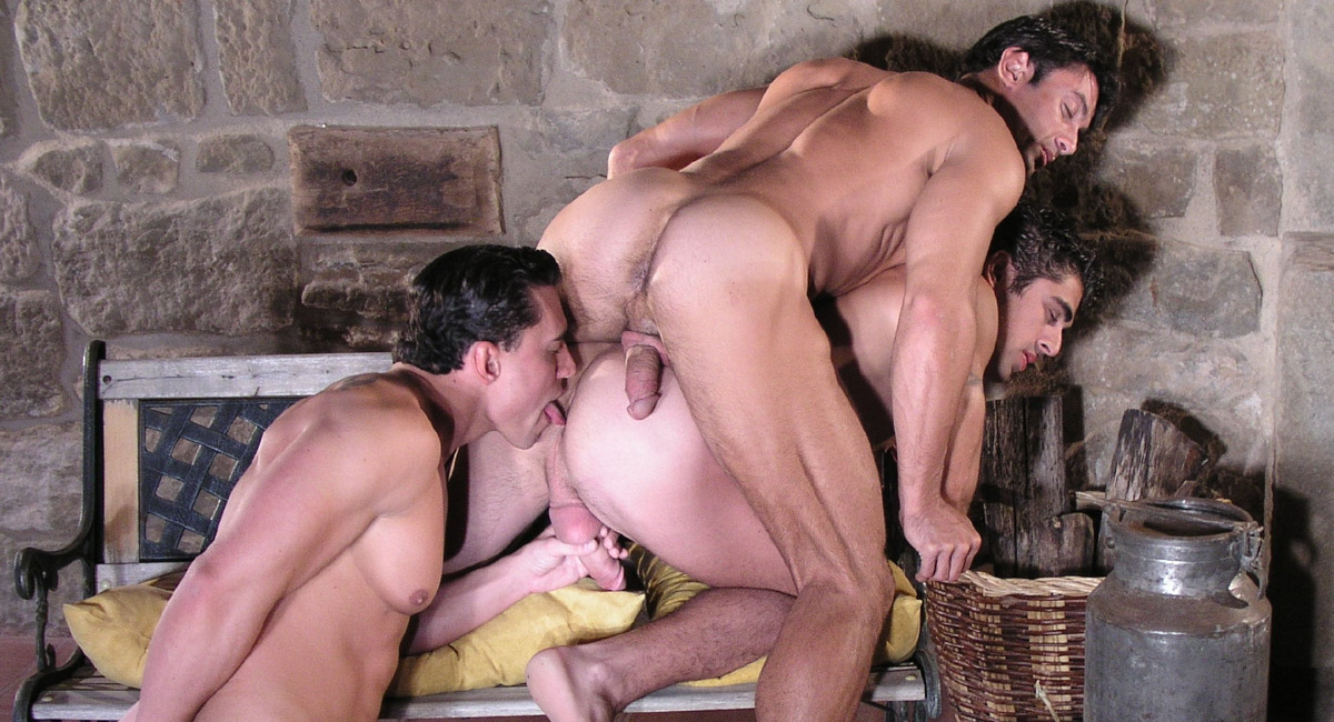 Raging Stallion: Fire Dance