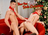 How The Twinks Stole Christmas