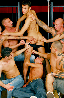 Breeding Party #04 Picture