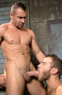 Hung Americans - Part 2 Picture